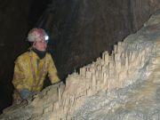 Sapins d'argile -315m au CE22